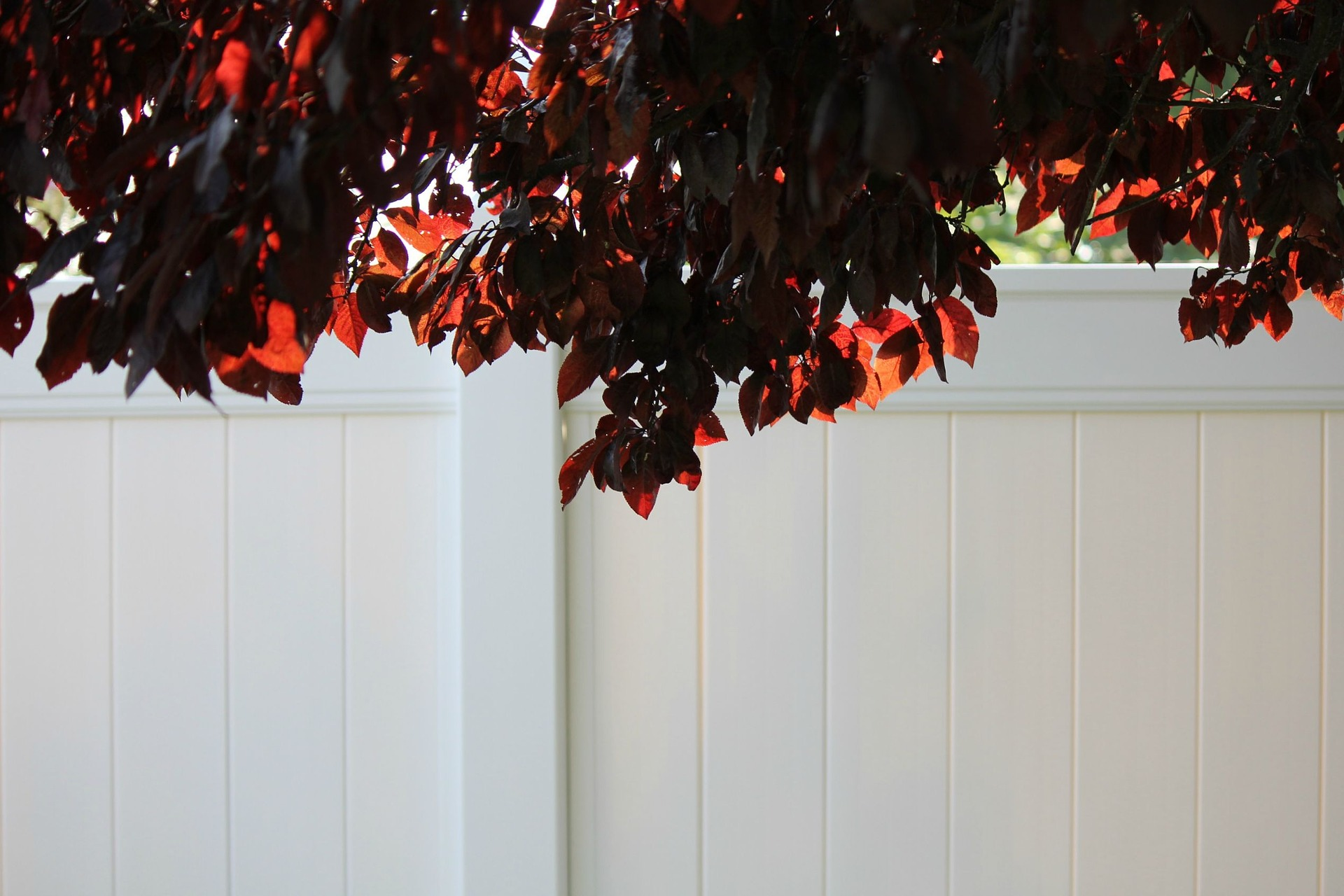 Vinyl Fencing for Landscapers and Contractors